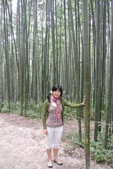 潭陽(タミャン)の竹緑苑(チュンノグォン)で見事な竹林を散策