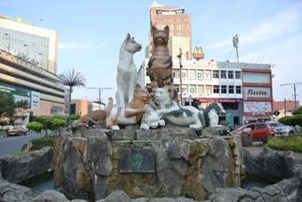 クチン観光1 猫の銅像、古い町並みやモスク、シーフード料理