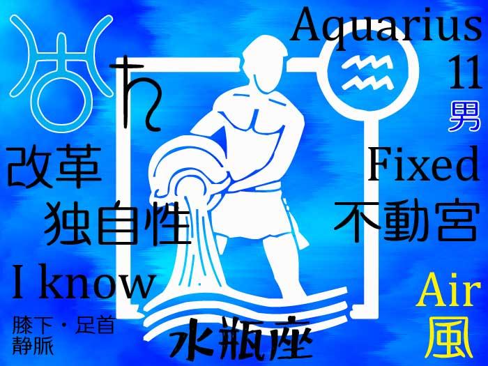 【サイデリアル】水瓶座の今のホロスコープ