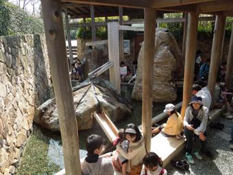 Nabana Garden