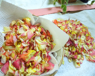 Making of Rose liqueur