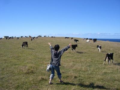 思いっきりニュージーランド!
