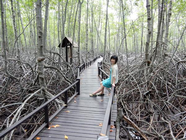 フアヒン旅行 プランブリ森林公園~チカダマーケット