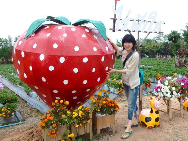 ワンナムキアオのいちご園ファーサイでいちご+無農薬野菜が素敵☆
