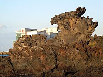 釜山からチェジュ航空でチェジュ島へ 東門市場、観徳亭、龍頭岩