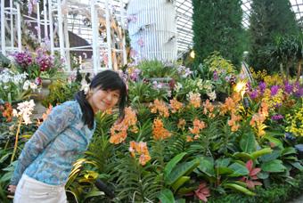 シンガポール観光1 ガーデンズバイザベイ~マリーナベイサンズ