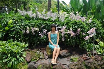 シンガポール観光2 ボタニカルガーデン、リトルインディア、マーライオン