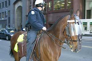 馬に乗ったおまわりさん