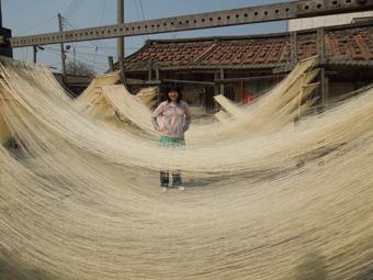 鹿港観光 麺作り、摸乳巷、工業地帯でガラス・栄養食品・リボン工場